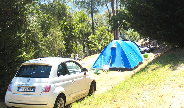 Pitch for small tent